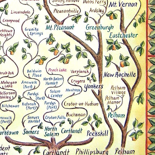 Westchester Family Tree Map