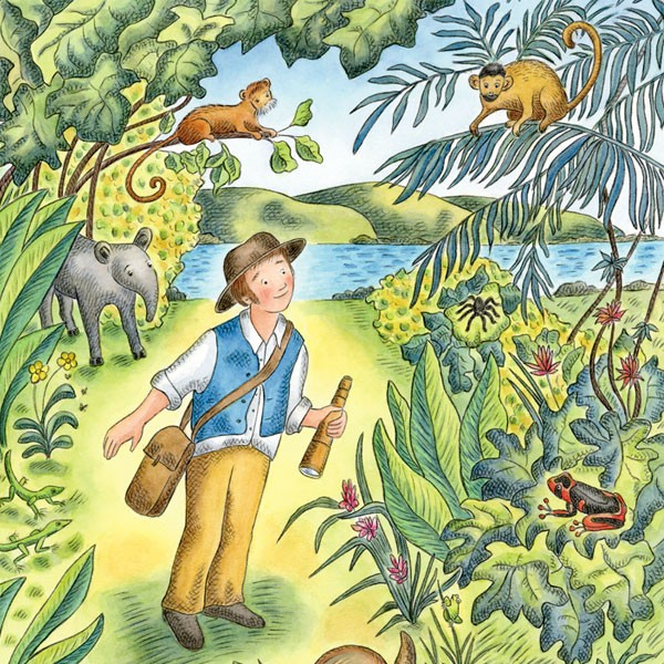 CHARLES DARWIN'S AROUND-THE-WORLD ADVENTURE ~ Rainforest